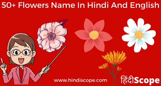 TOP 50 Flowers Name in Hindi English – Phoolon ke Naam