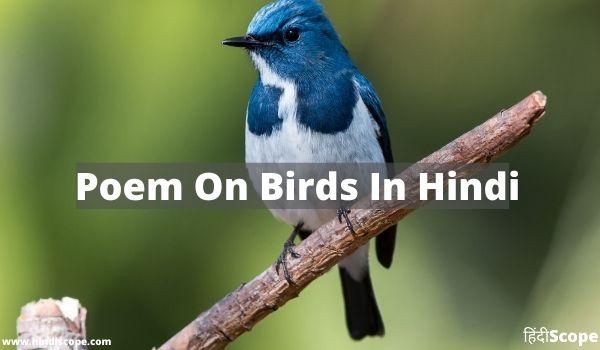 5+ पक्षियों पर बेहतरीन कविताये – Poem On Birds In Hindi