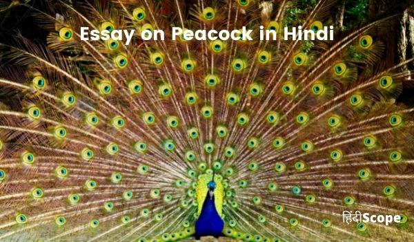 जानिए मोर के बारे में रोचक और अनसुनी बातें – Essay on Peacock in Hindi