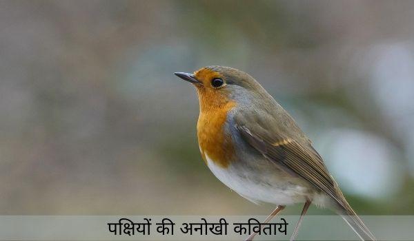 जाने पक्षियों की कुछ अनोखी कविताये-hindi poems on birds